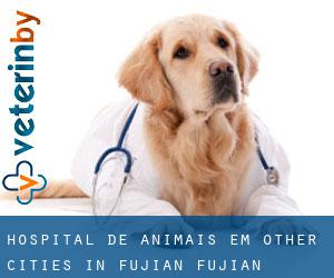 Hospital de animais em Other Cities in Fujian (Fujian)