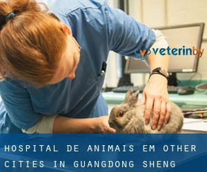 Hospital de animais em Other Cities in Guangdong Sheng (Guangdong Sheng)