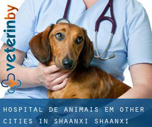 Hospital de animais em Other Cities in Shaanxi (Shaanxi)
