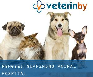 Fengbei Guanzhong Animal Hospital