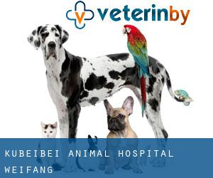 Kubeibei Animal Hospital Weifang