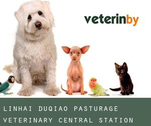 Linhai Duqiao Pasturage Veterinary Central Station