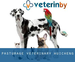 Pasturage Veterinary Huicheng