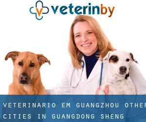 Veterinário em Guangzhou (Other Cities in Guangdong Sheng, Guangdong Sheng)