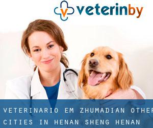 Veterinário em Zhumadian (Other Cities in Henan Sheng, Henan Sheng)